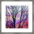 Maple Tree Sunset Framed Print