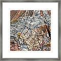 Marbleized Wood Framed Print