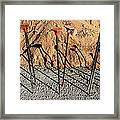 March Madness Framed Print