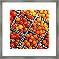 Market Fresh Tomatos Framed Print
