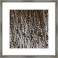 Marsh Grass Reflections Abstract 2 Framed Print