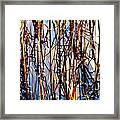 Marshgrass Framed Print