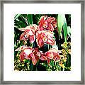 Joy Orchids Framed Print