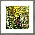 Me And The Bee Framed Print