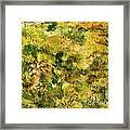 Meadow After Van Gogh Framed Print