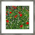 Meadow Flowers - Digital Oil Framed Print