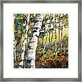 Meandering Woods Framed Print