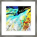 Mellow Yellow 62 Framed Print