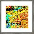 Mellow Yellow 68 Framed Print
