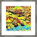 Mellow Yellow 75 Framed Print