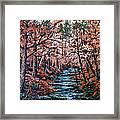 Mill Creek Framed Print by W  Scott Fenton