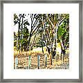 Miller Road Framed Print