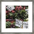 Mix And Match Framed Print