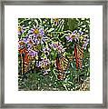 Monarch Butterfly Trio Framed Print