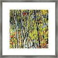 Monet Lives On Framed Print