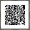 Monochrome Winter Wilderness Framed Print