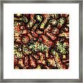 Mop By Rafi Talby Framed Print
