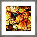 More Beautiful Gourds - Heralds Of Fall Framed Print