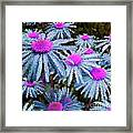 More Than Miles Green Teal Pink Framed Print