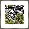 Morning Glories And Crab Traps Framed Print