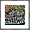 Mosaic Fly Framed Print