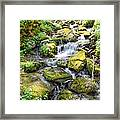 Mossy Creek Framed Print by Bob Jackson