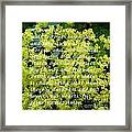 Most Powerful Prayer With Ladies Mantle Framed Print