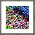 Mountain Leaves And Log Framed Print