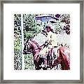 Mountain Man On A Horse Framed Print