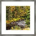 Mountain Stream In Autumn Framed Print