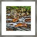 Mountain Stream Rushing After Heavy Rain E134 Framed Print