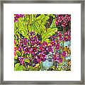 Mountain Wild Flowers Framed Print