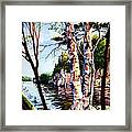 Muskoka Reflections Framed Print