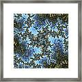 My Maui Fractal Art Abstract Palms And Blue Sky And Waters Framed Print