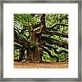 Mystical Angel Oak Tree Framed Print by Louis Dallara
