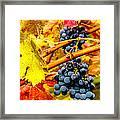 Napa Valley Grapes, California Framed Print