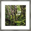 Natural Emeralds. I Wicklow. Ireland Framed Print