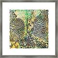 Nature Abstract 19 Framed Print