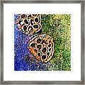 Nature Abstract 20 Framed Print