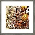 Nature Abstract 21 Framed Print