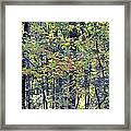Nature In Autumn 2012 Framed Print