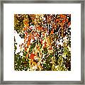 Nature In The City Framed Print by Jocelyne Choquette
