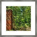 Nature Reclaims Framed Print