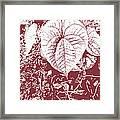Nature's Heart 2 Framed Print