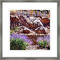 Nevada Framed Print