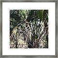 New Orleans - Swamp Boat Ride - 1212106 Framed Print