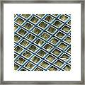 Nickel Electron Micrograph Grid Framed Print by David M. Phillips