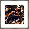 Night Of The Koi Framed Print