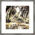 North Carolina 8 Framed Print