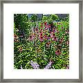 North Point Park Flowers Framed Print
